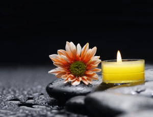 Still life with candle and basalt stones with gerbera after rain